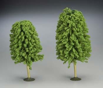 "32206 SS 5 1/2-6 1/2"" Deciduous Trees (2) O"