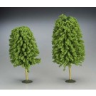 "32206 SS 5 1/2-6 1/2"" Deciduous Trees (2) O"