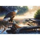 91379 Eagle Hunter PBN